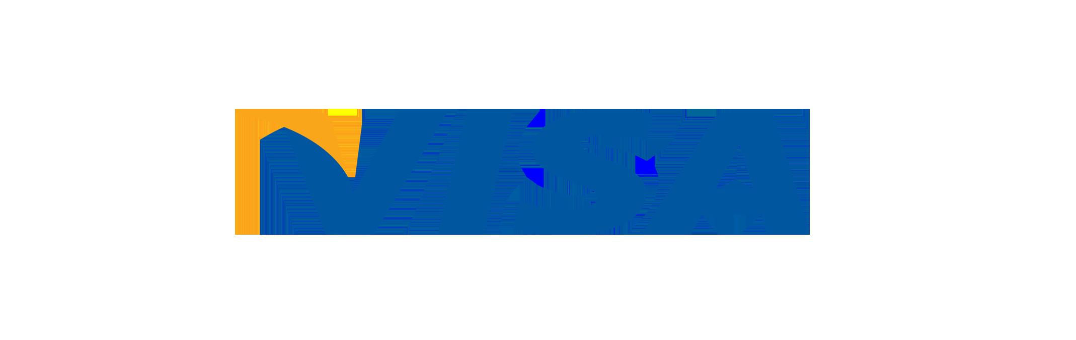 visa payment logo